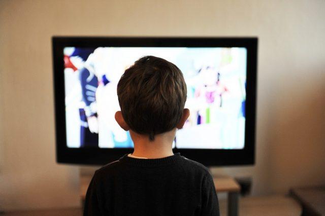 CEPROM: Deca u medijskom ogledalu